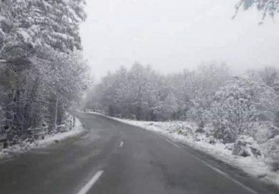 გომბორის უღელტეხილზე თოვს